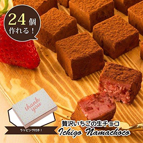 手作り材料キット  贅沢いちごの生チョコ ラッピング付き 2...