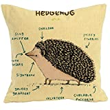 hedge hog ハリネズミ解剖 クッションカバー 45×45