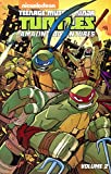 Teenage Mutant Ninja Turtles Amazing Adventures 2 (Teenage Mutant Ninja Turtles: Amazing Adventures)