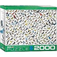 ジグソーパズル 2000ピース ユーログラフィックス 鳥の世界 8220-0821