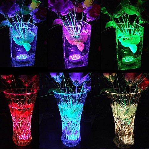 Nastima 水中ライト4個 IP68防水 水槽 花瓶 庭園 プールパーティ 結婚式 水族館 ハーバリウム 家と店舗の装飾用 リモコン付き