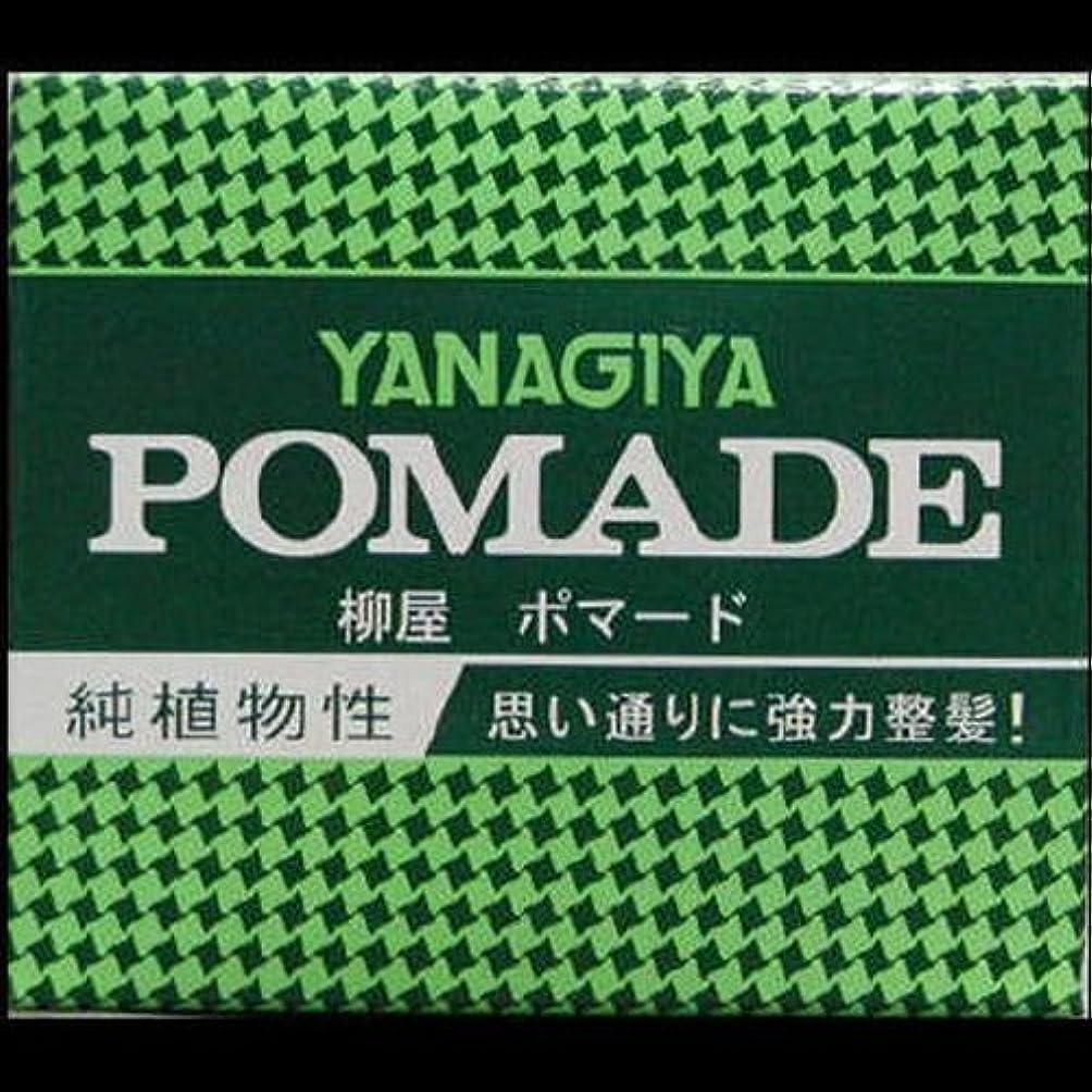 食料品店石のレタス【まとめ買い】柳屋 ポマード大 120g ×2セット