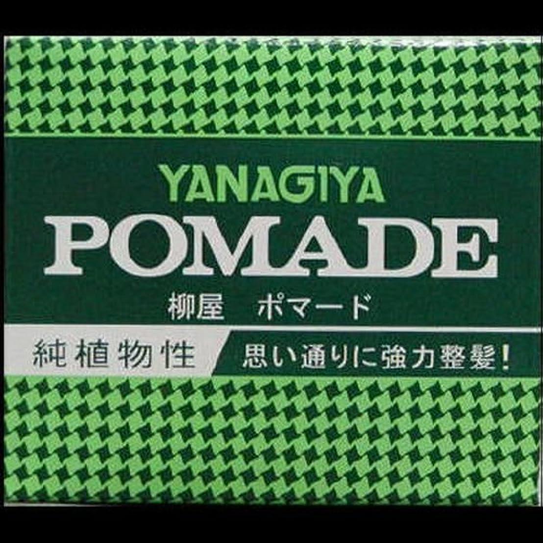 磁気旧正月不適【まとめ買い】柳屋 ポマード大 120g ×2セット