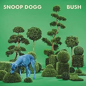 Bush [12 inch Analog]
