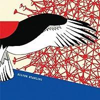 Silver Starling (Dig)