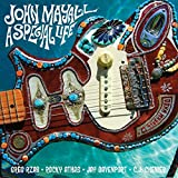 A SPECIAL LIFE [12 inch Analog]