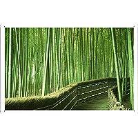 竹林の背景のティンサイン 金属看板 ポスター / Tin Sign Metal Poster of Bamboo Forest Background
