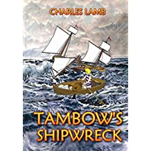 TAMBOW'S SHIPWRECK (Tambow The Wombat Book 3)
