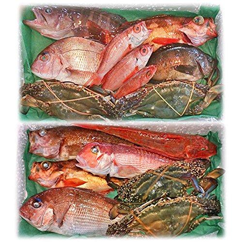 魚水島 「厳選」日本海の鮮魚セット 海におまかせ・ちょっと贅沢編