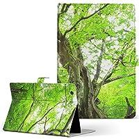 Qua tab 01 au kyocera 京セラ キュア タブ 01au タブレット 手帳型 タブレットケース タブレットカバー カバー レザー ケース 手帳タイプ フリップ ダイアリー 二つ折り 写真・風景 写真 森 植物 01au-005452-tb