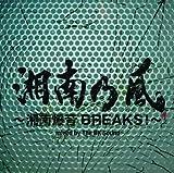 湘南乃風 ~湘南爆音BREAKS!~ mixed by The BK Sound <通常盤> 画像