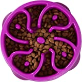 Outward Hound 51005 Fun Feeder Dog Bowl Slow Feeder Stop Bloat for Dogs, Small, Purple