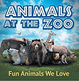 amazon animals at the zoo fun animals we love zoo animals for