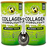 Great Lakes Gelatin, 2 Pk Collagen Hydrolysate Unflavored Beef Protein Kosher 16 Oz Cans and Measuring Spoons Combo Pack