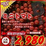 訳あり規格外品!! ミニトマト 3kg箱