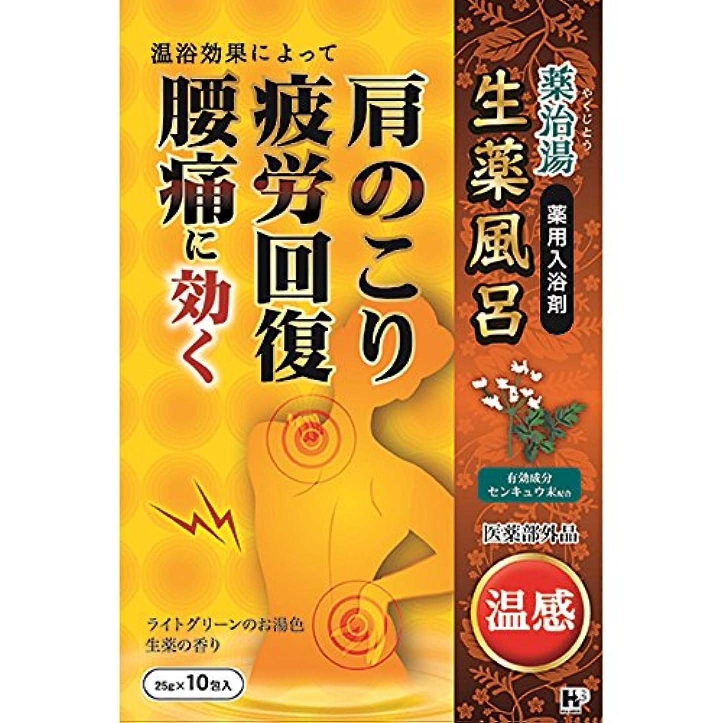 ポイント蒸気薬を飲む薬治湯 温感 25g×10包