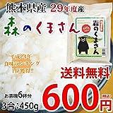 送料無料 お試し 森のくまさん 米 450g 3合 熊本県産 ポイント消化 お米 白米 玄米 コシヒカリ ヒノヒカリ