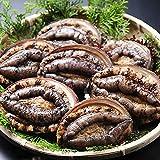 築地魚群 冷凍アワビ 韓国産 100gサイズ10枚