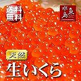 魚水島 北海道~岩手県産 生いくら 季節限定「とろりやわらか 生イクラ」 1kg