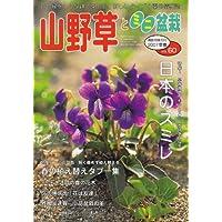 山野草とミニ盆栽 2007年 03月号 [雑誌]