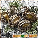 北海道グルメマート 北海道産 冷凍蝦夷あわび260g(2個入)お刺身・ステーキに (アワビ あわび 鮑)