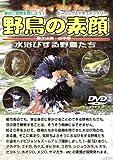 野鳥の素顔 水浴びする野鳥たち -富士山麓・山中湖- [DVD]
