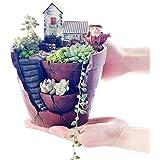 手描植木鉢、サボテン、多肉植物、観葉植物の鉢、植物プランター(空の庭-ファーストフロア)