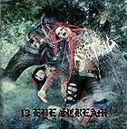 13 EYE SCREAM~SPECIAL DX edition~(DVD付)()