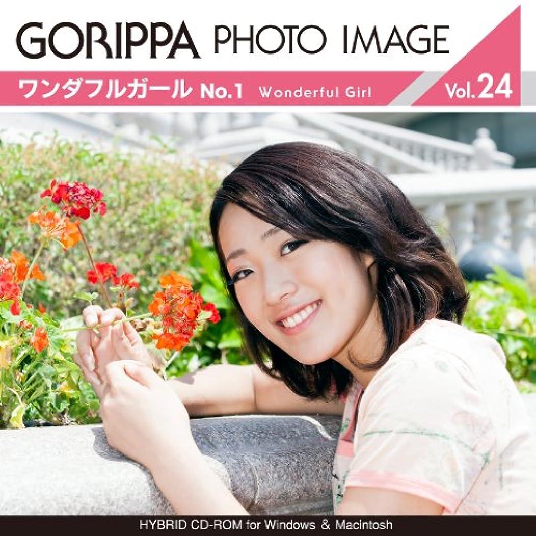 開いたキャンパス自分GORIPPA PHOTO IMAGE vol.24?ワンダフルガール No.1?