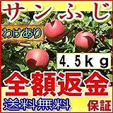 訳あり 【農園より産地直送】 長野県産 サンふじ りんご ご家庭用わけあり品 約4.5kg 12~25個入