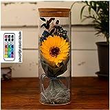 Sunflower Flowers Eternal Sunflower, Carnation Flower Everlasting Sunflower Send Girlfriend Best Gift