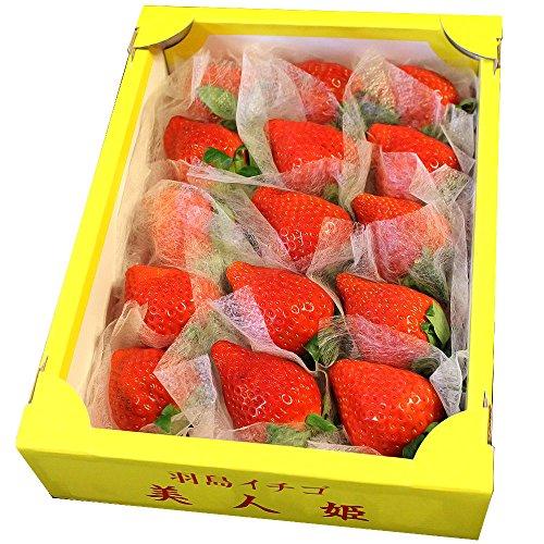 岐阜県産 いちご 美人姫 びじんひめ いちご 15粒入り 1粒38g前後 大粒サイズ 化粧箱入り
