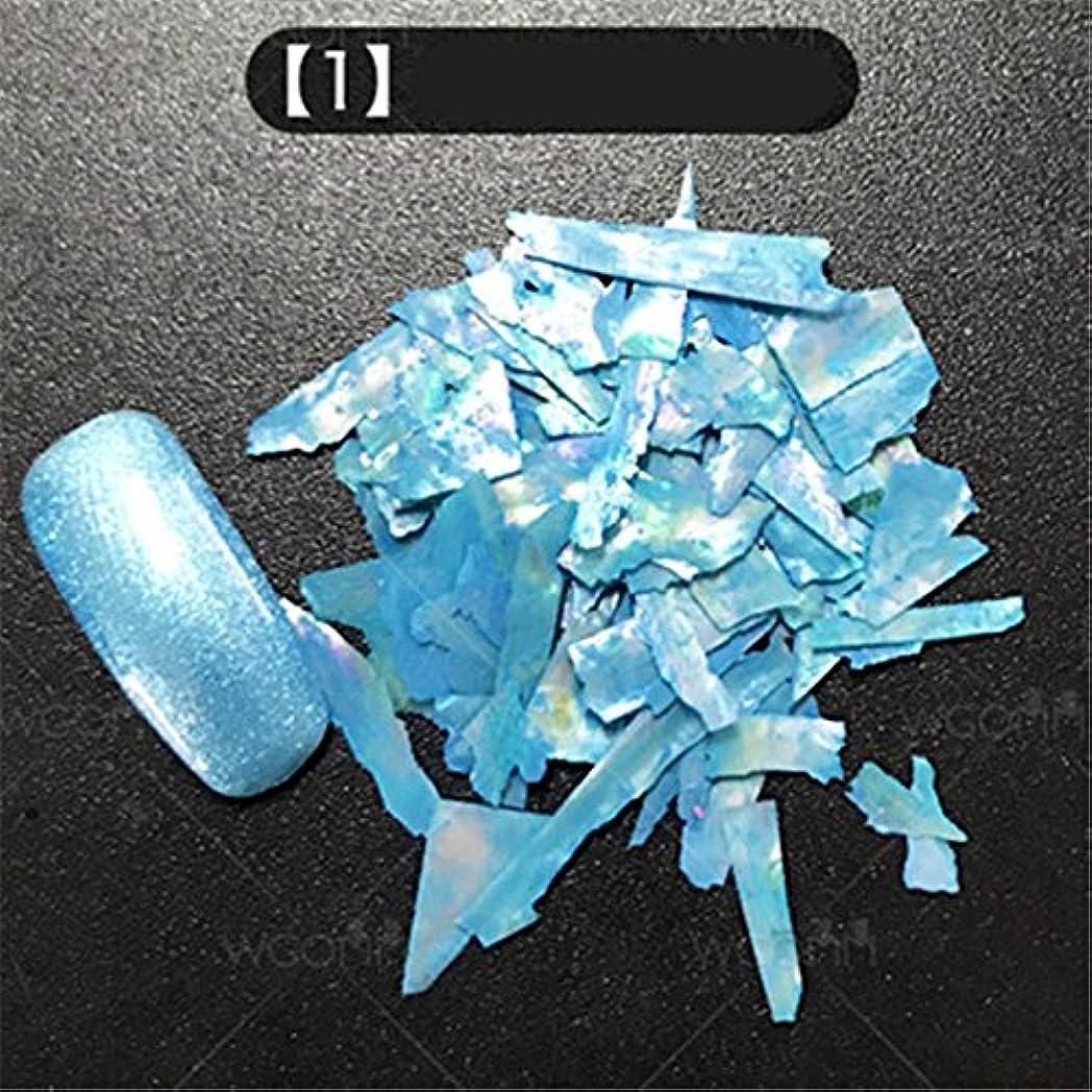 南エイリアントリム12色選択可能 カラフル 人魚 天然 貝殻 クラッシュ シェル ネイルアート デコレーション UVジェル ネイルパーツ  ネイルサロン (01) [並行輸入品]