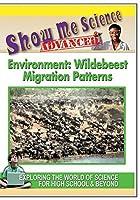 Environment: Wildebeest Migration Patterns【DVD】 [並行輸入品]