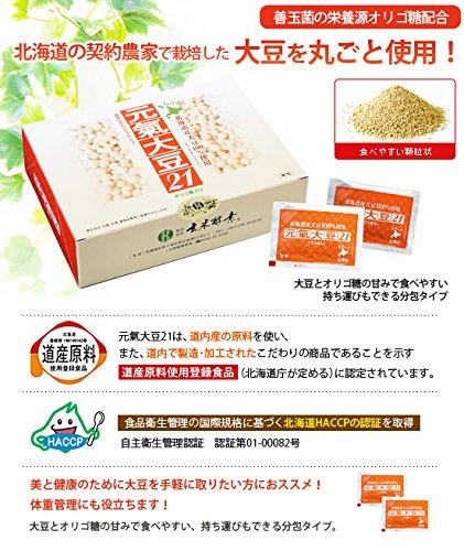 玄米酵素 元氣大豆21 顆粒/3.5g×90袋入