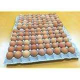 深いコクが特徴!!松浦の赤たまご 小さめサイズ98個+破卵保障10個