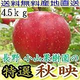 産地直送 長野産 りんご 秋映 A品 約4.5kg 12~20個入