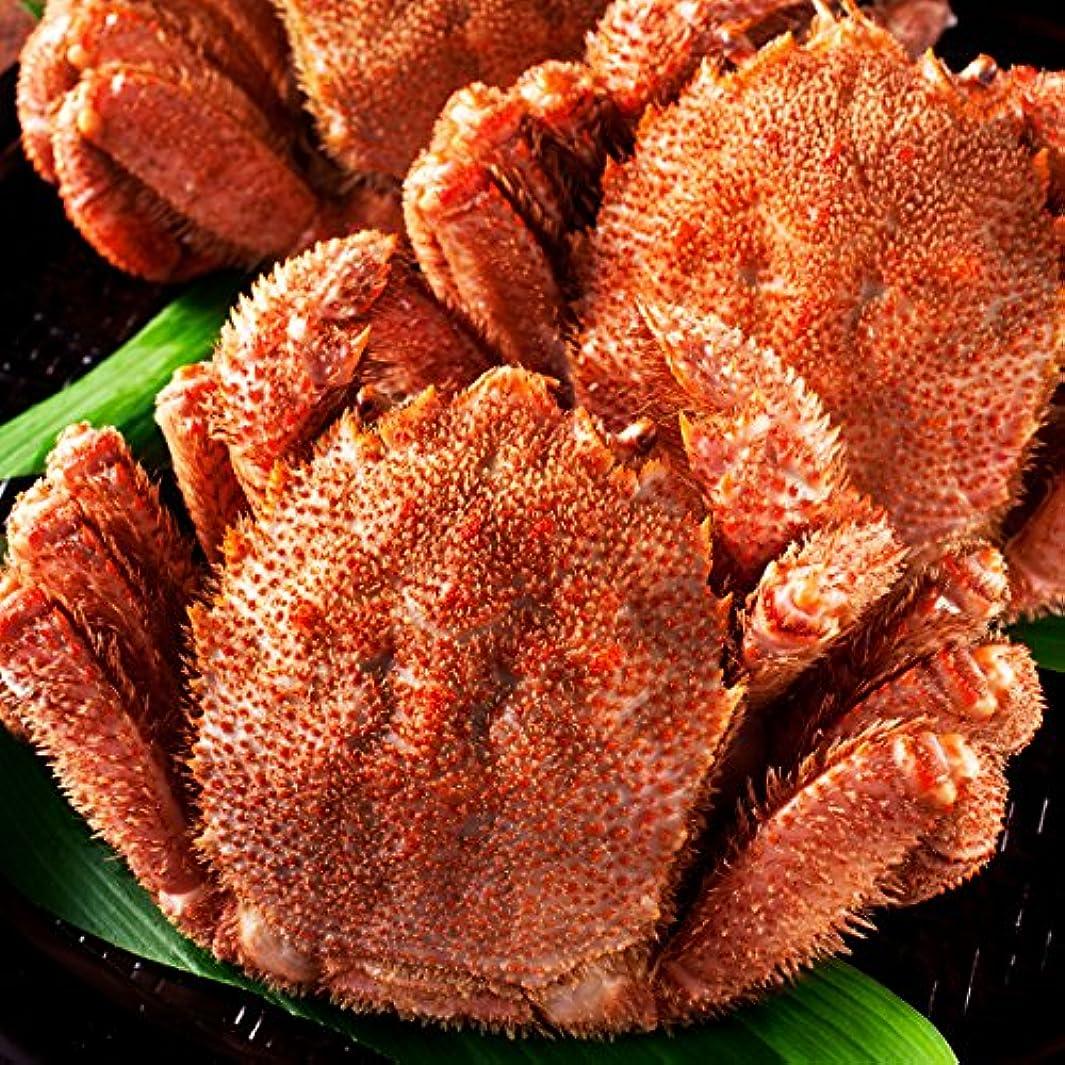 性能考古学者に付けるますよね 北海道産 ボイル 毛蟹 (500g×2匹) 濃厚 蟹味噌入 毛ガニ