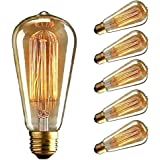 Vintage Edison Bulb, CMYK Dimmable 40W ST64 Antique Bulb Squirrel Cage Filament Light for Decorate Home, E27, 2700K, Warm Whi