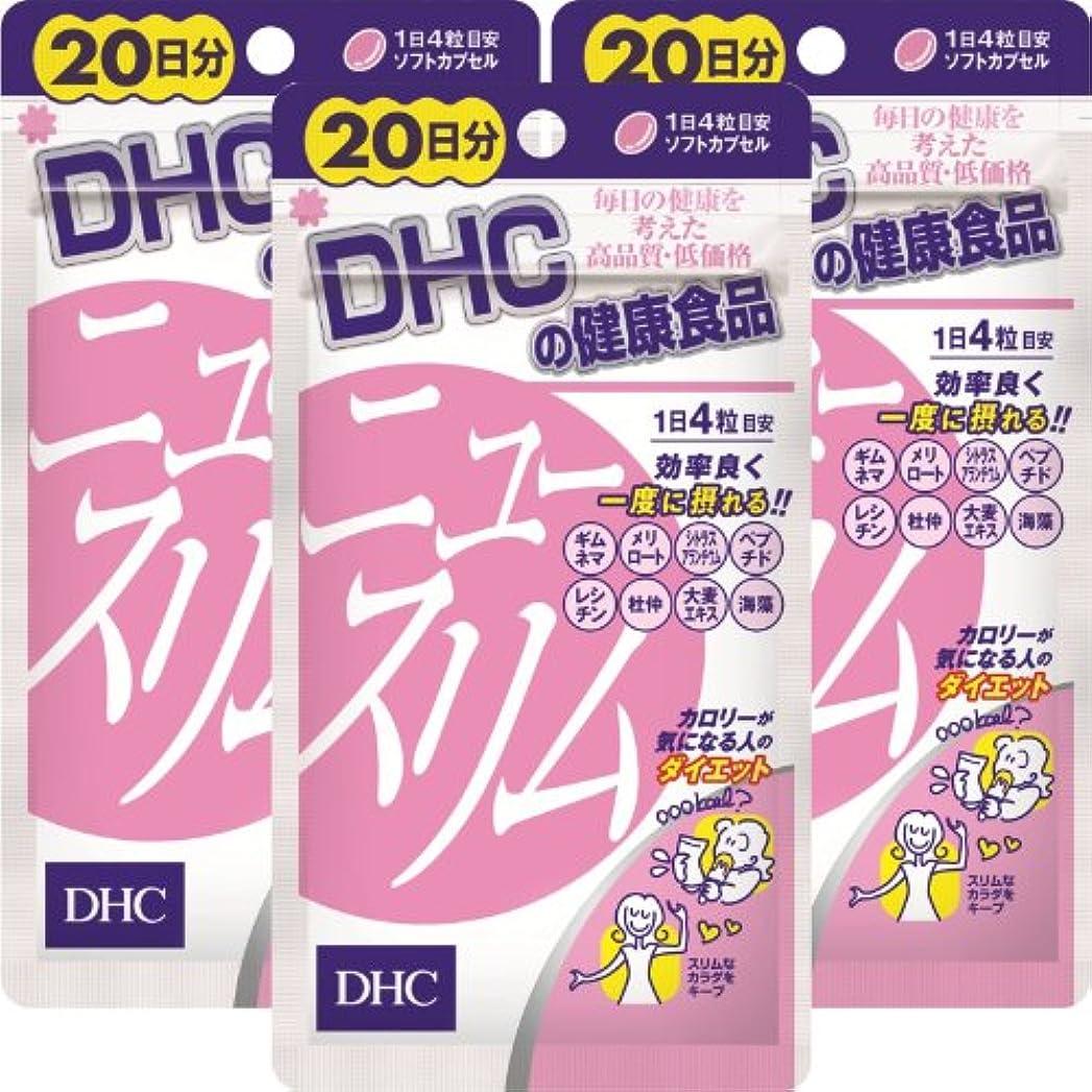 堤防フック困ったDHC ニュースリム 20日分(80粒)×3個
