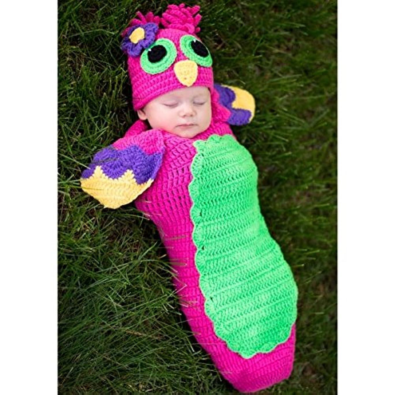 忘れられないグリーンランド促すベビーコスチューム,着ぐるみ,寝相アート,フクロウ(コクーンとハット)2点セット/Baby Costume, Owl, (cocoon, hat)