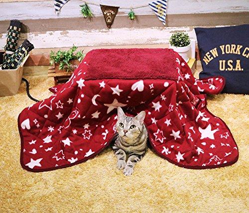 ドギーマン 遠赤外線ペットの夢こたつ -