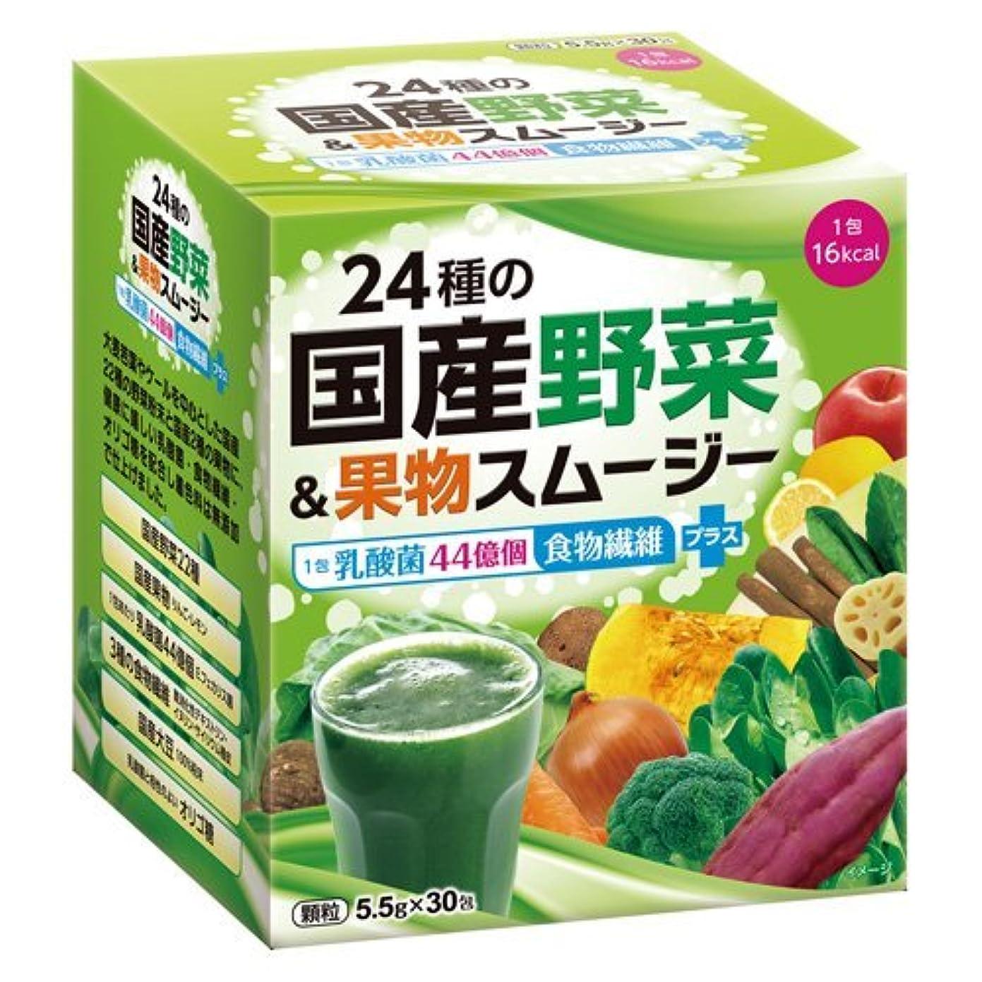 保証緑睡眠24種の国産野菜&果物スムージー 165g(5.5g×30包)