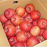 山形産 早生ふじ りんご 5kg 約20玉前後 訳あり ご家庭用