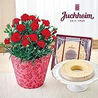 母の日 ユーハイム「バウムクーヘン」とカーネーション鉢のセット 日比谷花壇