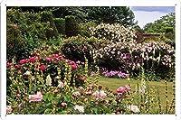 バラ園のティンサイン 金属看板 ポスター / Tin Sign Metal Poster of Roses Garden