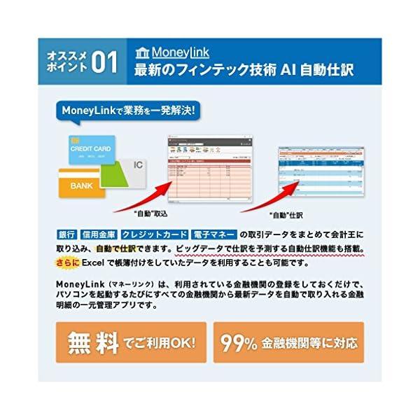 みんなの青色申告19 消費税改正対応版の紹介画像2