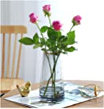 ガラス花瓶 花器ガラス フラワーベース 花瓶おしゃれ22CM Fukuka北欧風 水耕栽培 インテリア飾り 大きい花瓶…