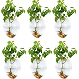 Wall Hanging Glass Planters 6Pcs Mouse Shape Plant Pots Terrarium Container Vase with 6.36 OZ Colorful Stones Indoor Outdoor
