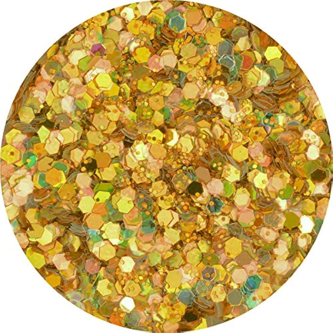 本質的ではない上陸とんでもないラメホロ ミックス [ラメ&ホログラム1mm]mix 選べる12色 (11.シャンパン)